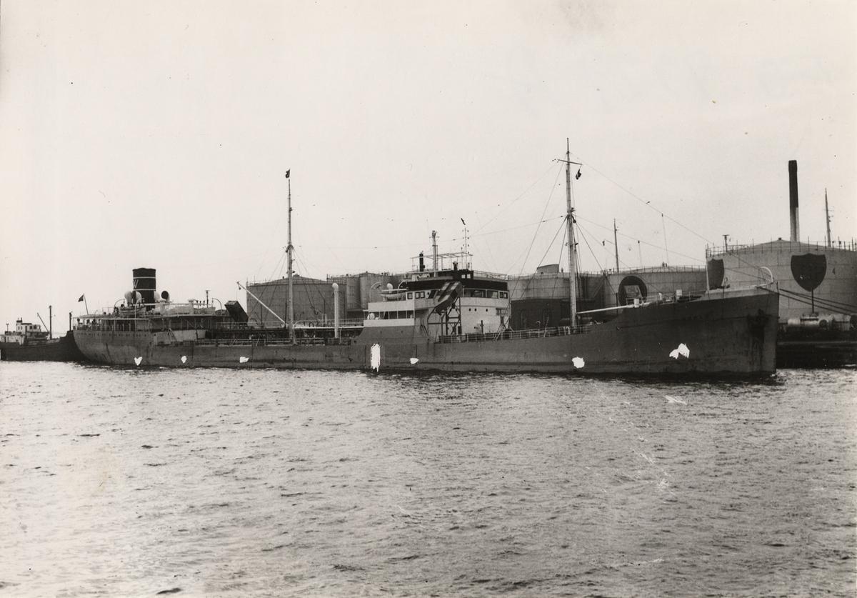 Fartyg: NOREG                          Bredd över allt 18,0 meter Längd över allt 137,9 (LPP) meter  Rederi: Skibs A/S Corona, Haugesund (NO) Byggår: 1931 Varv: Burmeister & Wain (DK) Övrigt: Namnsignal: LDST; Br.t.: 7602
