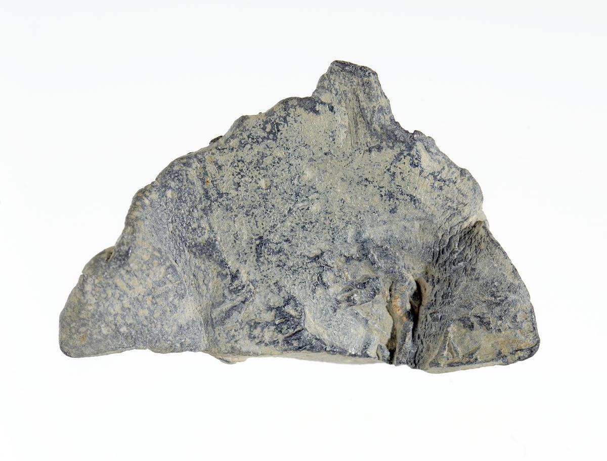 Advers: deler av vingen og ei krone som trolig tilhører et motiv av en tohodet ørn med krone.  Revers: deler av entydelig minuskel n med perle inni.
