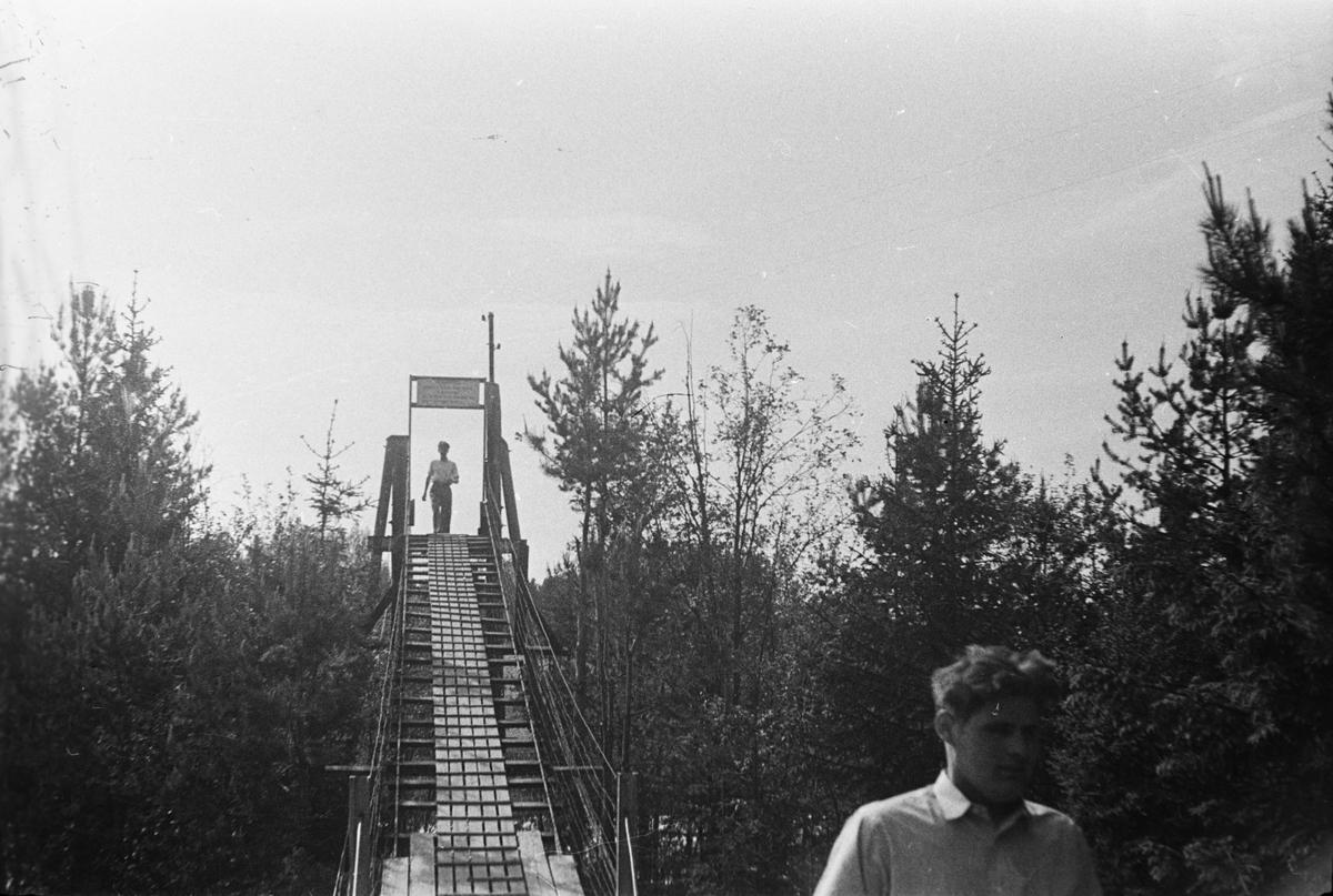 Skjefstadfossen. Heradsbygda, Elverum.  Hengebro.