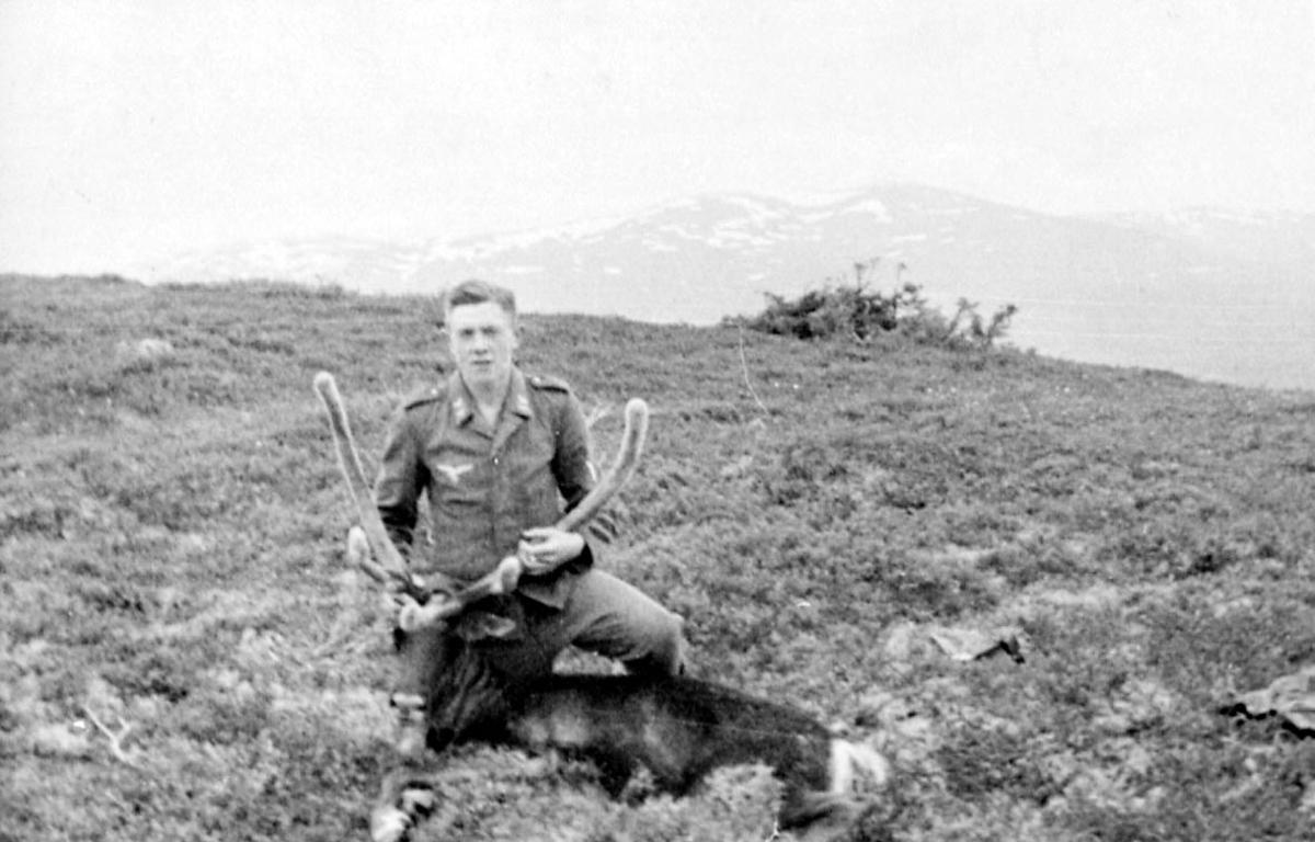 Portrett. 1 person, mann i militæruniform med et reinsdyr.