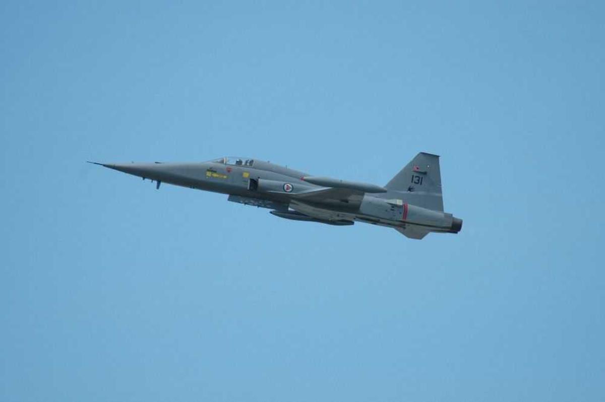 Ett fly i lufta F-5 Freedom Fighter 131.