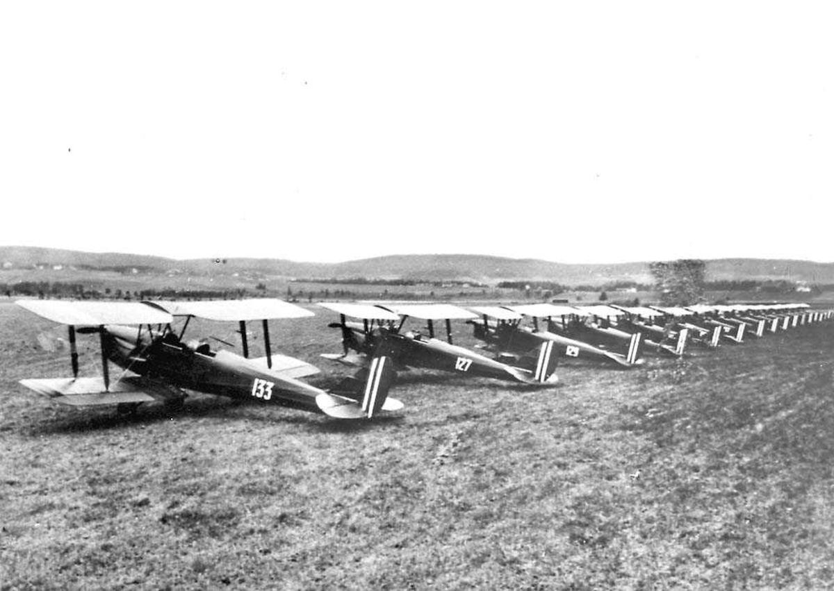 Flere fly oppstilt på et jorde, Tiger Moth D.H. 82.
