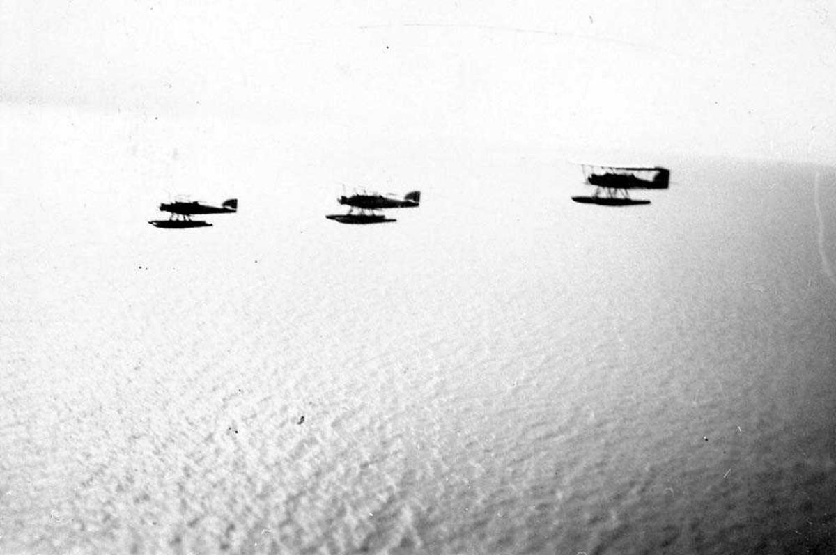 Luftfoto. Tre fly i luften.