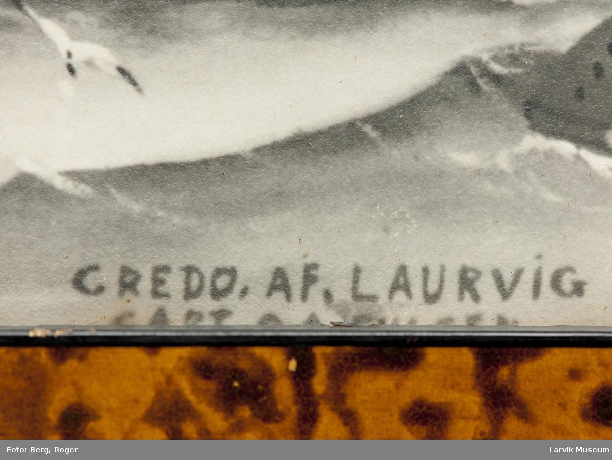 Barken Credo af Laurvig