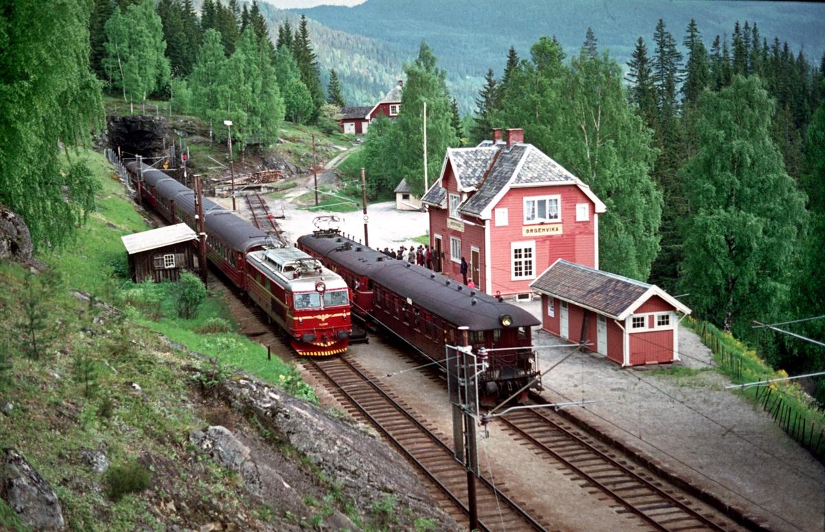 Kryssing i Ørgenvika stasjon mellom ekstratog for Norsk Jernbaneklubb og ekspresstog 603.