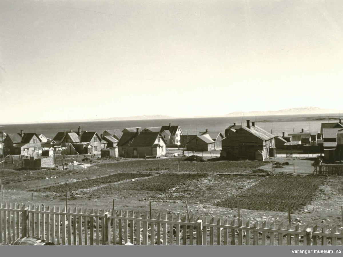 Vadsø. Ytrebyen med Varangerhus og åkre ca 1940-44