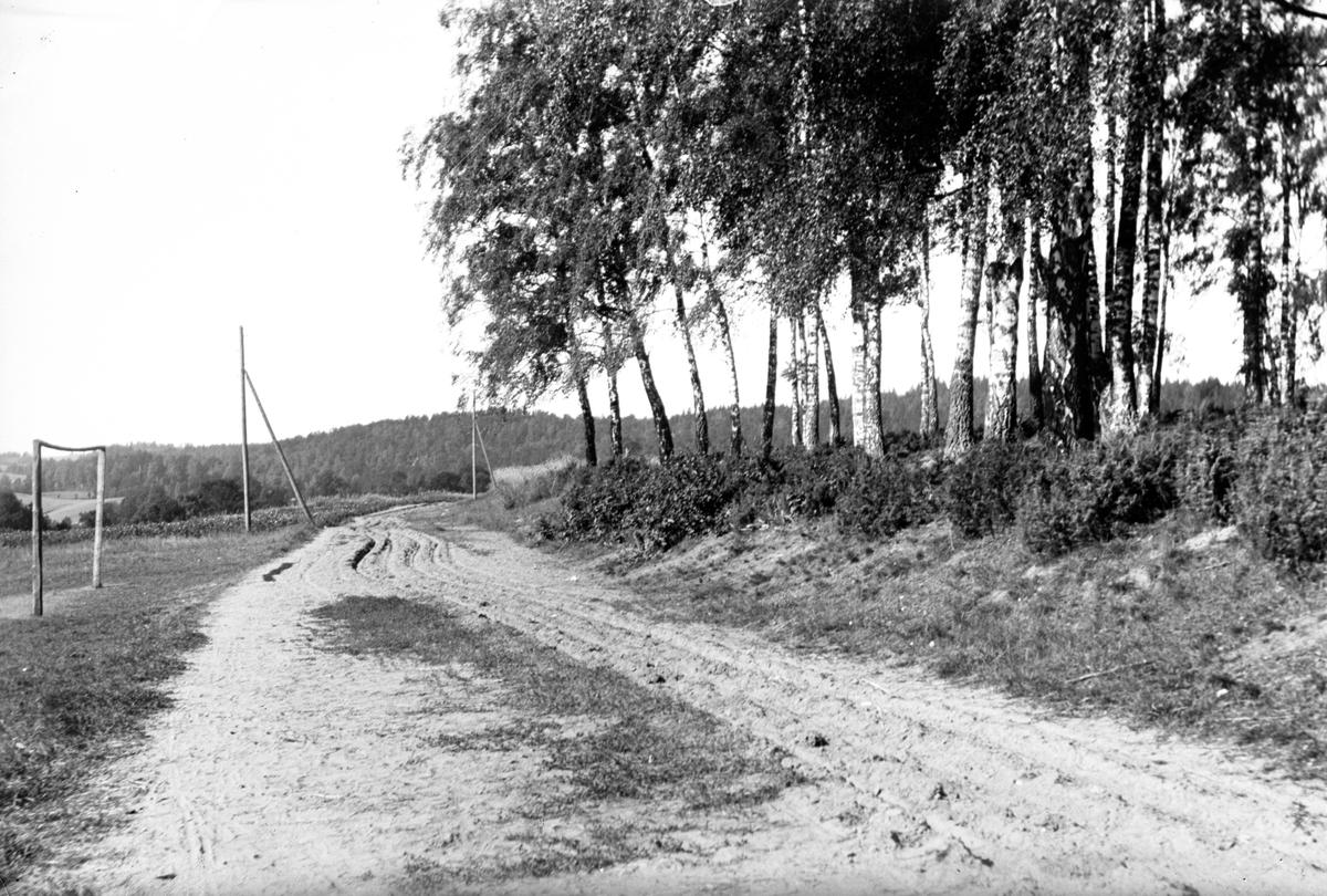 En väg med djupa hjulspår går utmed fälten. Till höger en träddunge och till vänster ett fotbollsmål.