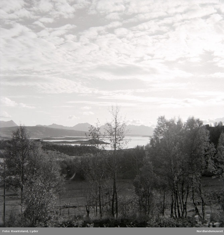 Kvantolands protokoll: 1. pl. fra Drag i Tysfjord, resten fra Hamarøy
