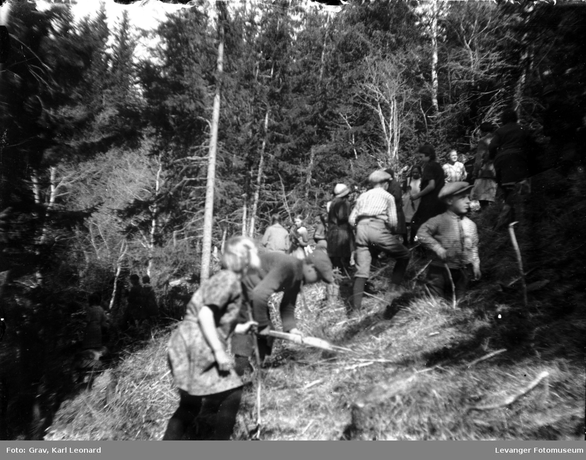 Gruppebilde, elever på skogplanting