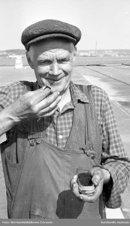 Nytt amerikanskt snus säljs i Sundsvall. Uppskattat av vissa, men inte alla.
