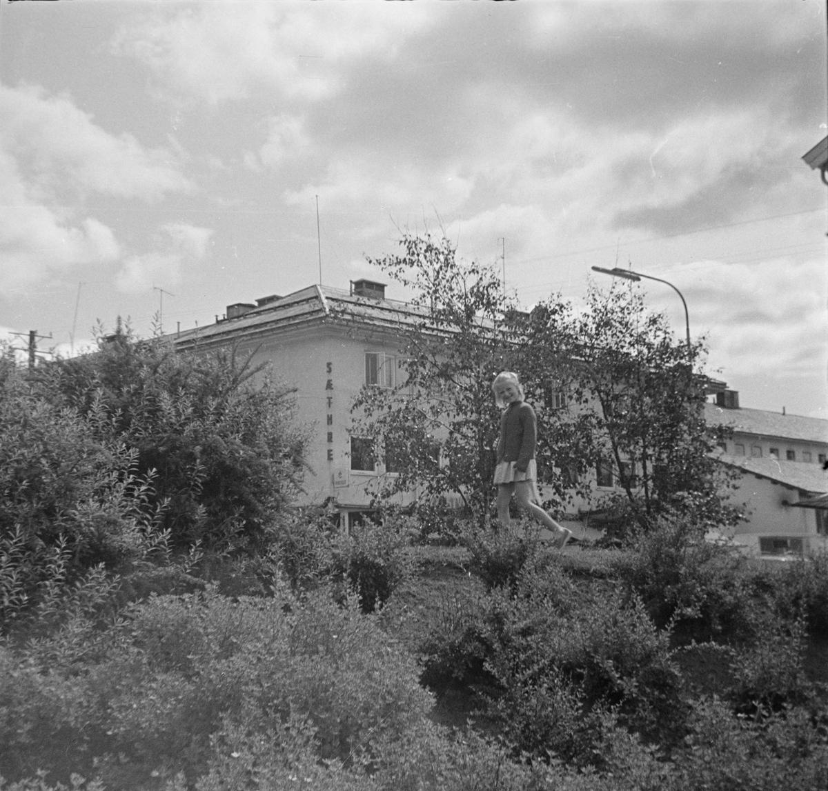 Elvarheimparken, Elverum.