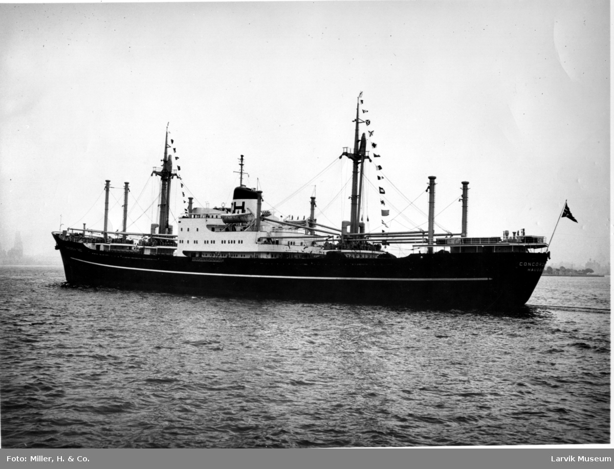 "fartøy, motorskip, M/S ""Concordia Tadj"" av Haugesund"