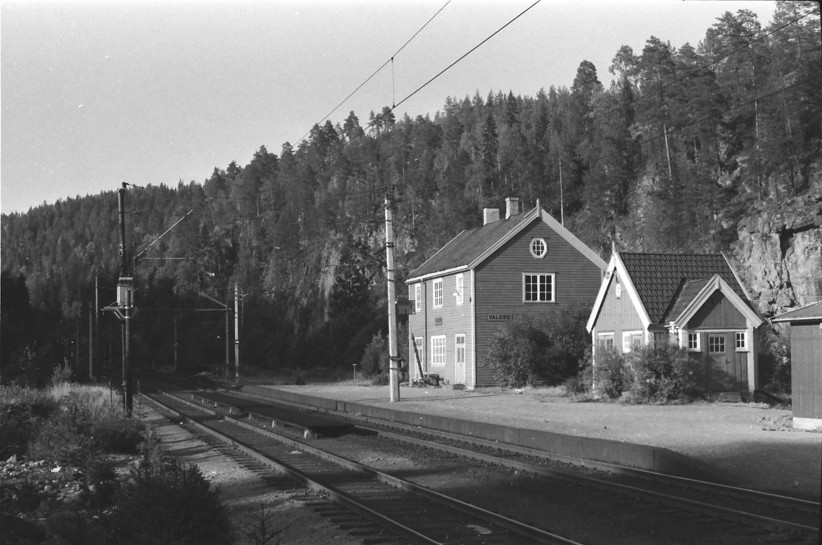 Valebø jernbanestasjon. Stasjonsbygning og uthus.