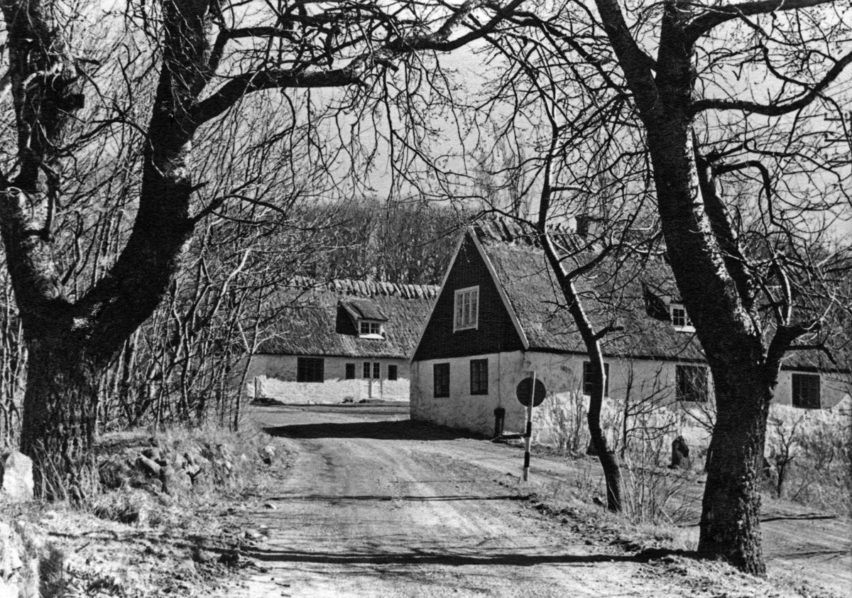 På Kulla, påsk 1950. Kullagårdens annex