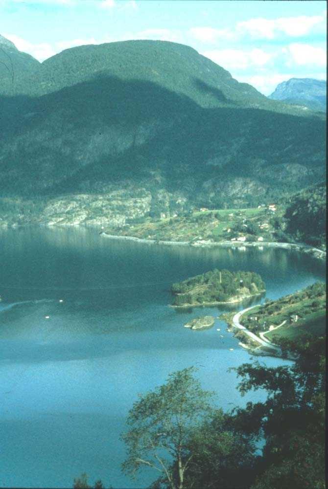 Luftfoto. Bygd i sommerskrud klemt mellom fjord og fjell. Ett sted på Vestlandet.