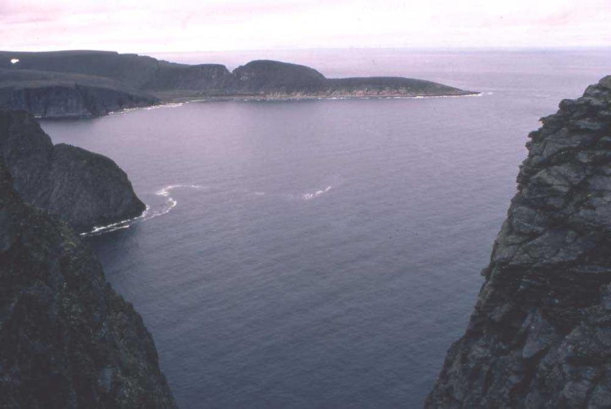 Landskap. Knivskjelodden sett fra Nordkappplatået som er Norges nodligste punkt.
