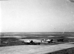 Åpen plass, ant. lufthavn, tre fly på bakken, skrått forfra.