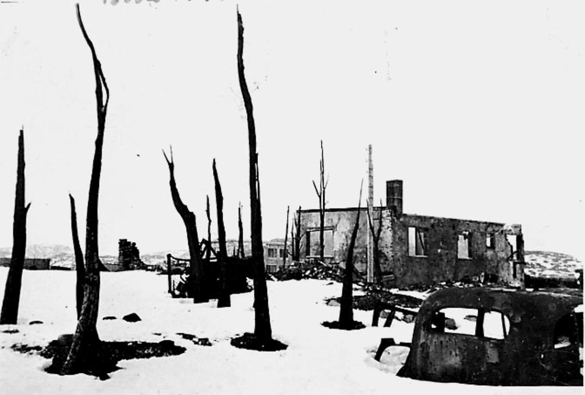 Ruin av bygning. Bodø etter bombingen under 2. verdenskrig. I forgrunnen avsvidde trær. Snø på bakken.