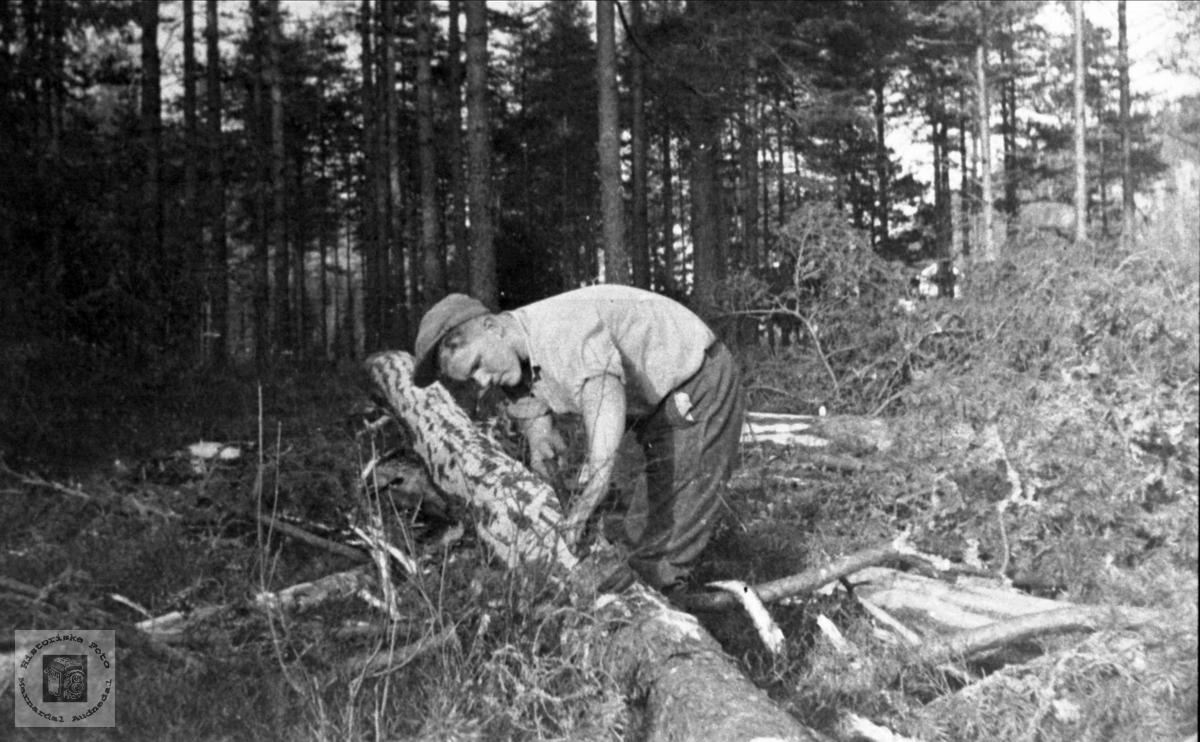 Barking av tømmer i Skålneset, Finsland (Marnardal).