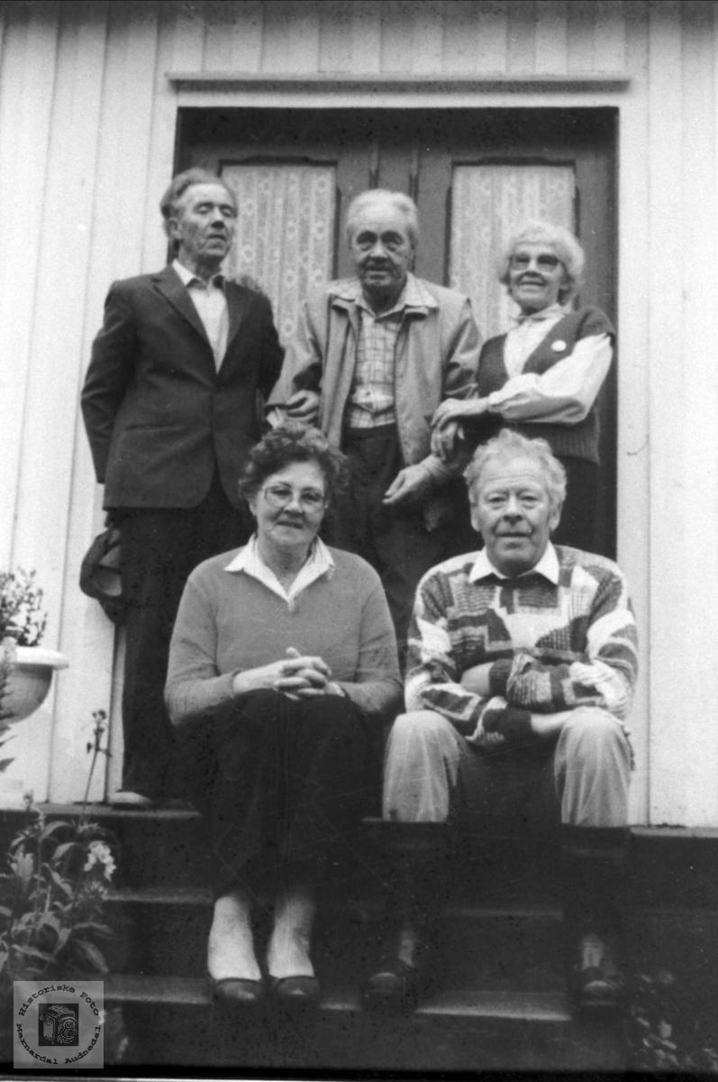 Familiegruppe (søsken)