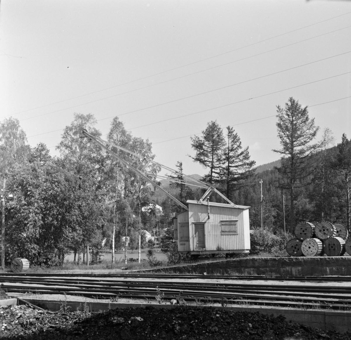 Tømmerkranen på Treungen stasjon.