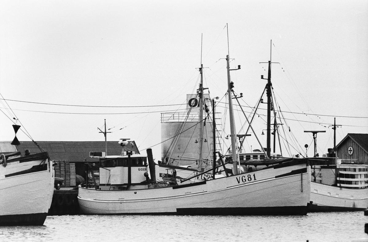 Fartyg: VG 81 GIDEON                    Övrigt: VG 81 GIDEON, Varbergsbåtar.