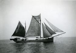 Ägare:/1930-60/: ett partrederi, Huvudredare: August B. Berl