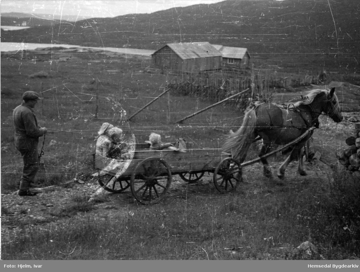 Prestegardshusstølen på Løkenstølane i Hemsedal. Frå venstre: Ola Prestegårdshus styrer hesten, May Toril Mythe, Torbjørn Hjelm og Yngvar Hjelm