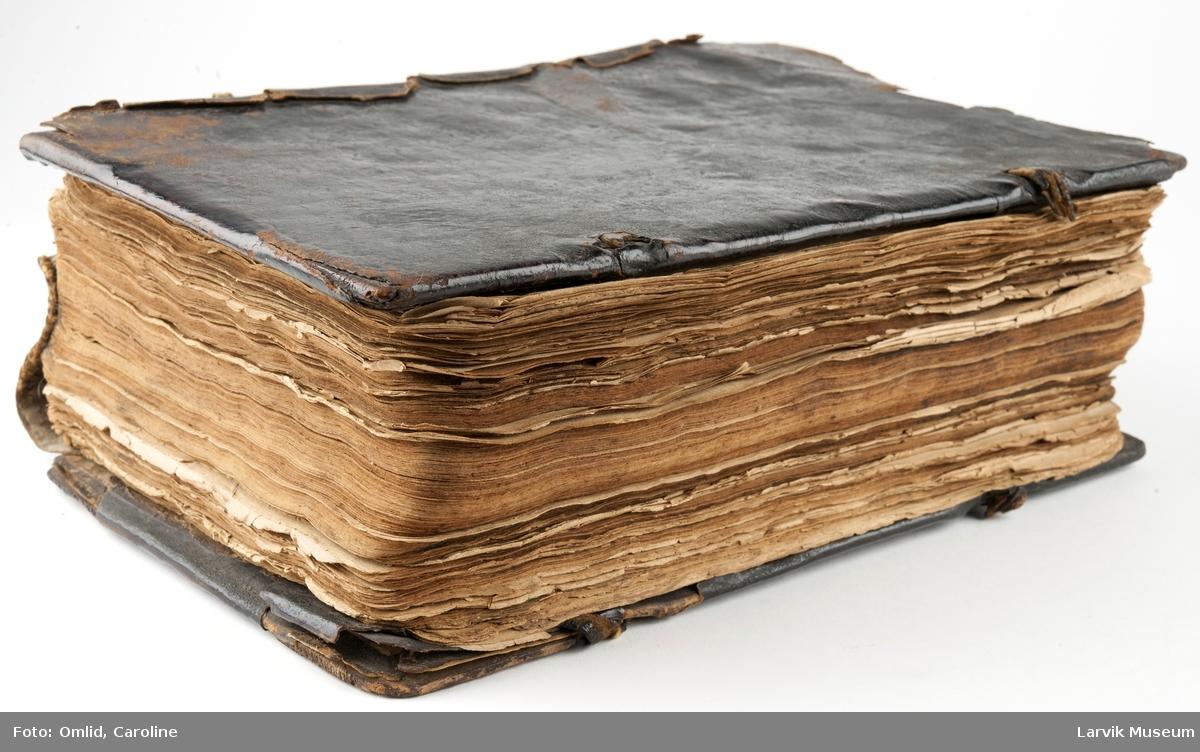 Innbundet bok inneholder nærmere 1500 sider. Inneholder forklaringer til bibelsteder i N.T. til bruk på helligdager og søndager