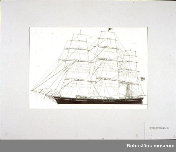 Montering/ram: Passepartout av tunn grå kartong; 55 x 66 cm, Amerikanska klipperskeppet Flying Cloud, 1851, dubbelt rekord 89 dagar från New York till San Francisco. Övrig historik se UM72.26.001.