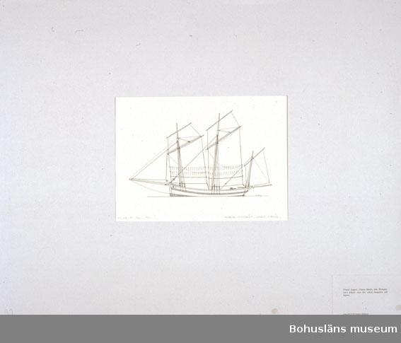 Montering/ram: Passepartout av tunn grå kartong; 55 x 66 cm, Fransk loggert, Chase Marée, från Bretagne, mest fiskare, men förr också smugglare och kapare. Övrig historik se UM72.26.001.
