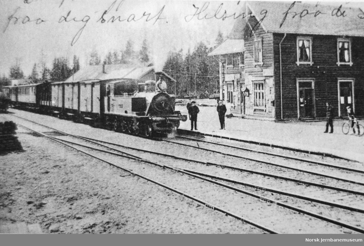 Blandet tog ankommer Dokka stasjon