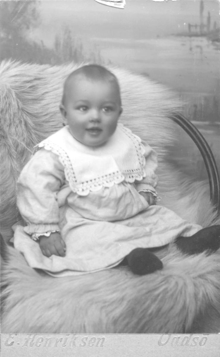 """Portrett av en liten gutt, Arne Rolstad. På bildet er han 7 og halv måned gammel. Han er kledd i en lys kjole med en stor hvit krage og sitter på en reinskinn på en stol. Bildet er tatt mot en tidstypisk, håndmalt landskapsbakgrunn. Fotograf Emilie Henriksen, Vadsø. I folketellingen for 1910 for Nesseby Herred, Tana, jfr. Digitalarkivet er  Arne Rolstad registrert som sønn av lærer Fredrik Rolstad (født 30.11.1873 i Nesseby og hustru Karoline Rolstad (født 28.8.1877 i NordVaranger) . I familien er også """"fosterpike Dagmar Methi, født 17.11.1897 i Vadsø,  oppført på samme adresse; Fuglaasen, Klubvik, Mortensnes."""" Fredrik Rolstad er også registrert i folketelling for Nesseby i 1875, 2 år gammel. Da er adressen """"Svenskevigen."""" Fredrik Rolstads foreldre er """"Fisker, Gaardbrg. Selveier"""" Ole Nilsen Rolstad (født 1830) fra Fron i Gudbransdalen og Serine Estensdatter (født 1833) fra Strinden. De hadde barna Johan Rolstad, Josofine Rolstad, Andreas Rolstad og Oluf Rolstad."""