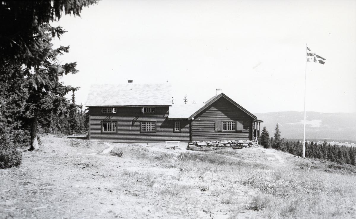 Tømmerhus i skogkant