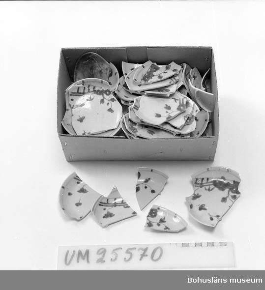 2,1 kg fragment av ostindiska tefat i kinesisk modell av 1700-talsimport. Dekor i underglasyrblått och överglasyrmåleri i järnrött och guld vilket sistnämda måleri mestadels nötts bort av havsvattnet. Motiv dels staket och blomma, dels trädgårdklippa.  Fynd- och förvärvsomständigheter se UM025565