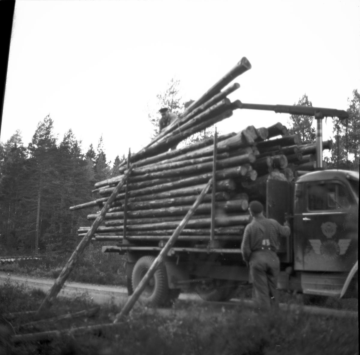Timmertransport vid nya vägen i Kroppefjäll  Ör