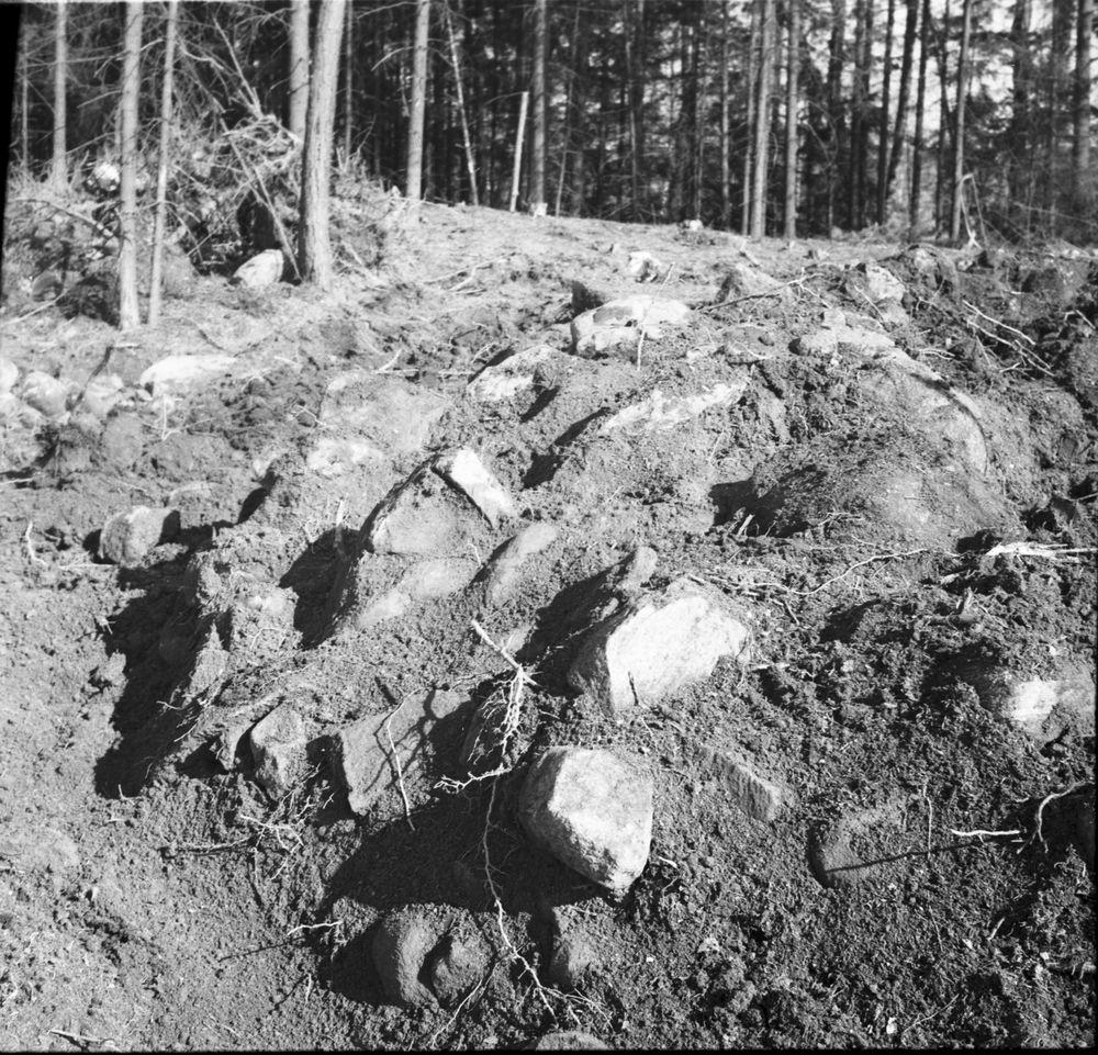 Nycklabacken  Åltorp  vid utgrävningen 1955  Tarsled