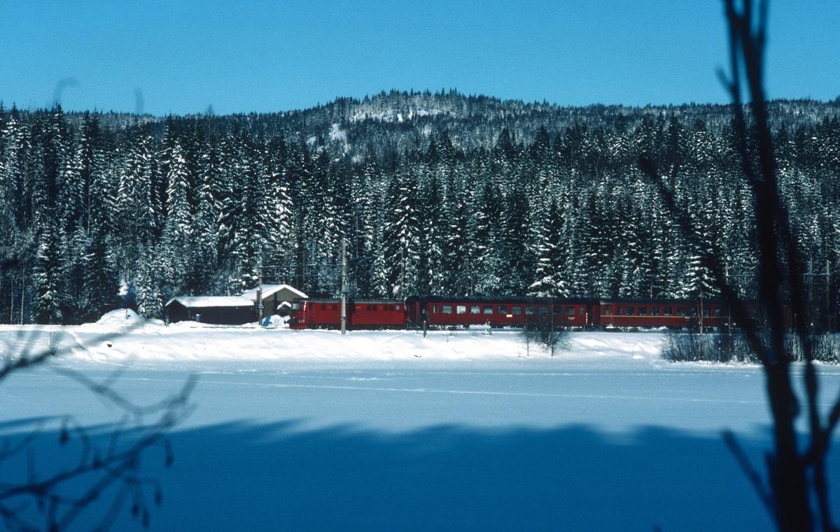 Persontog fra Fagernes og Gjøvik passerer Movatn en vinterdag.