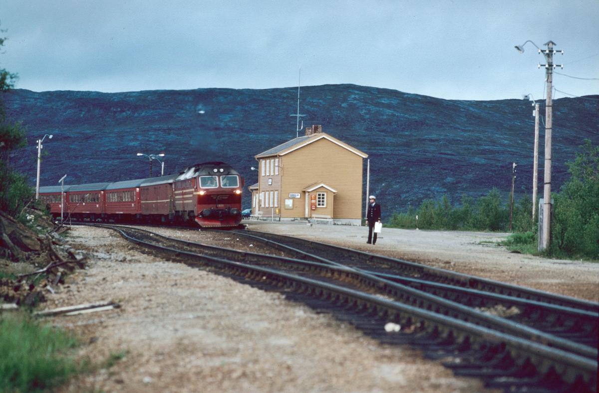 Nattoget til Trondheim kjører inn på Lønsdal stasjon en sommerkveld. Togekspeditøren venter med ordre til lokomotivføreren.