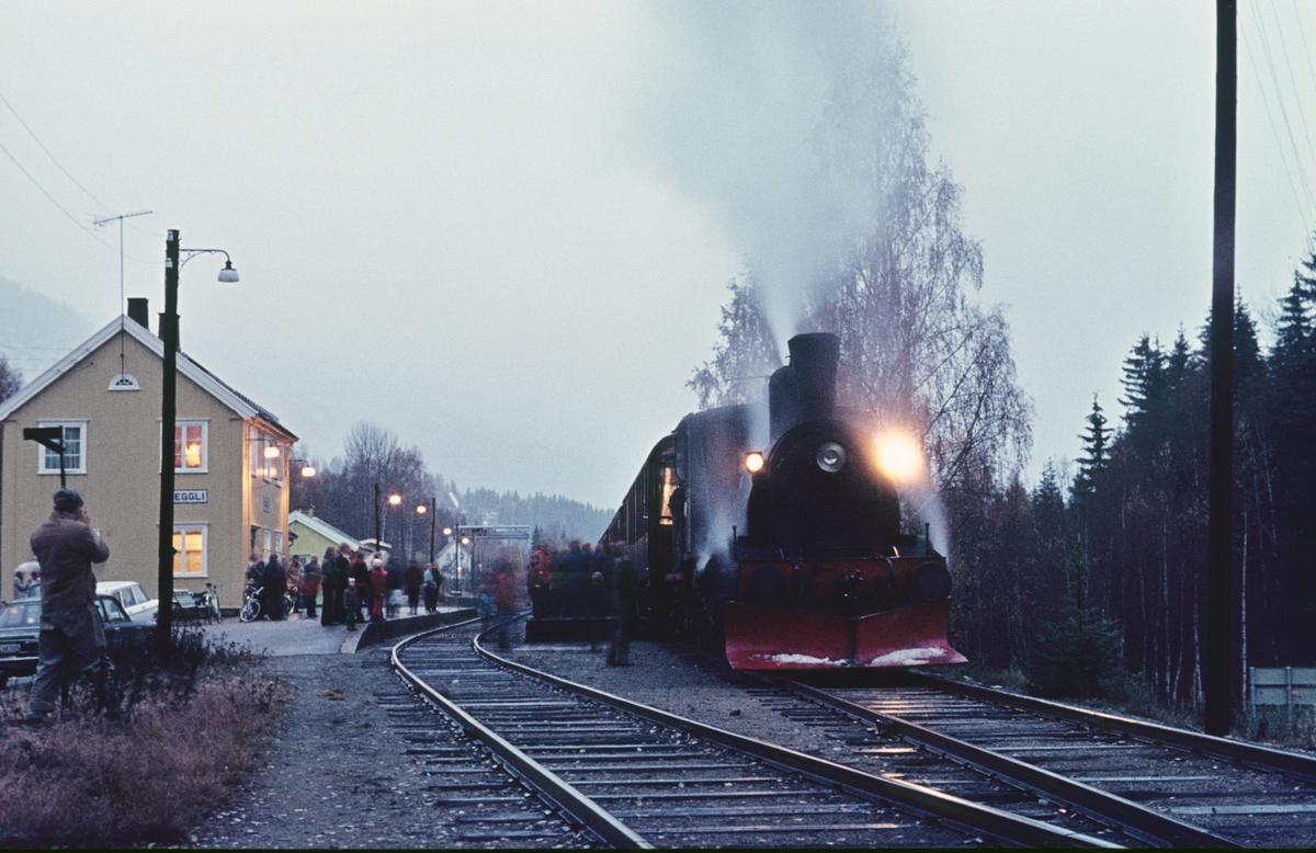 Veterantog på Veggli stasjon med damplok 21b 252. Turen ble arrangert av A/L Urskog-Hølandsbanen.