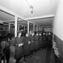 Den ridande polisen i Sundsvall läggs ned efter nära 32 år o