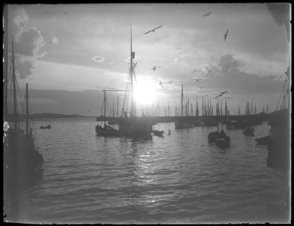Båter innfor moloen på Nordre våg i Vardø lav sol - det er enten midnattsol eller solnedgang
