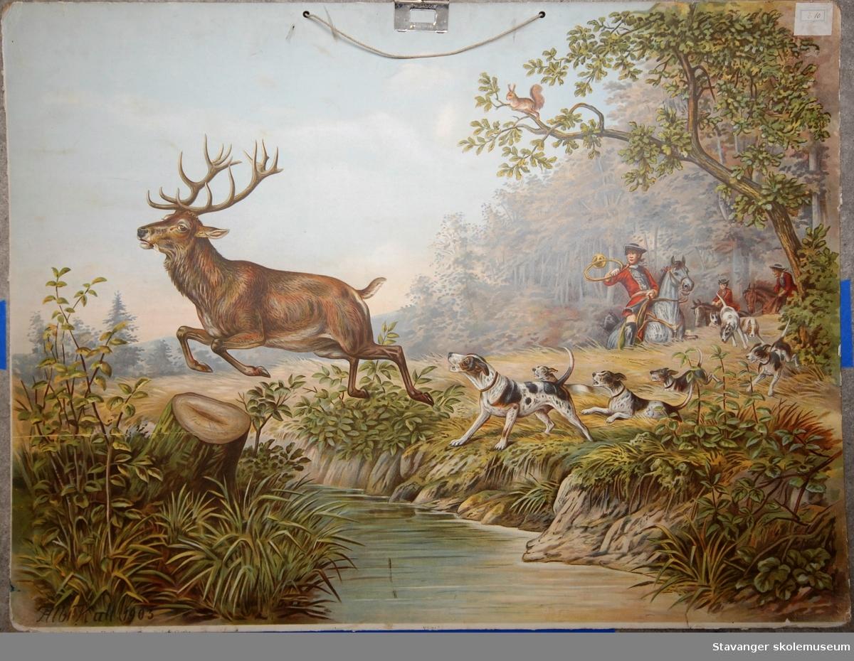Hjortejakt med hunder og ryttere på hester.