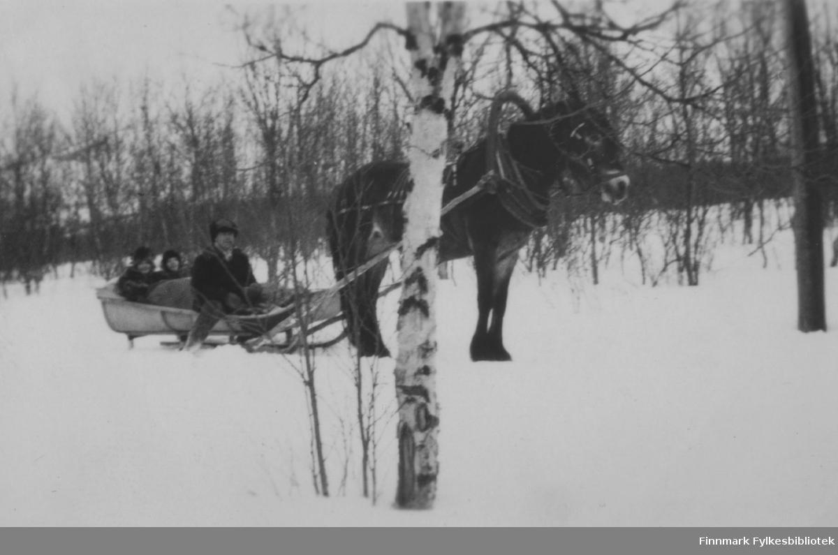 Påsketur til Neiden, påsken 1932. Solveig Evanger og Dagny Nordahl sitter i sleden som Sverre Joki kjører.