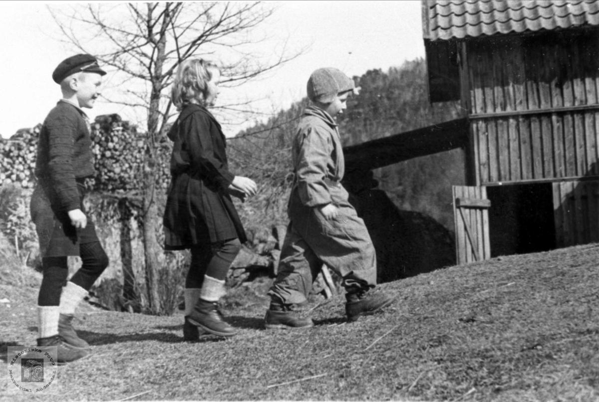 17. maitog 1941 på Trygsland