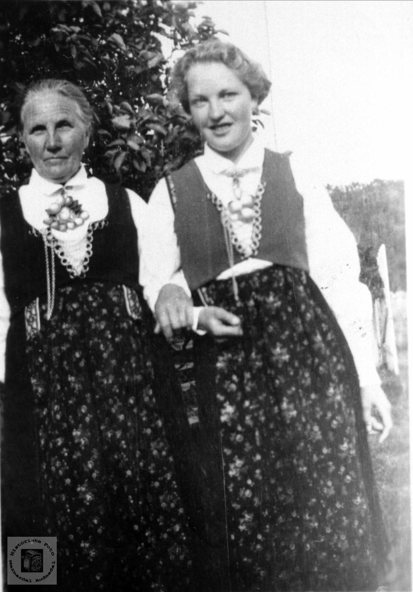 Mor og dotter i Veste-Agder bunader