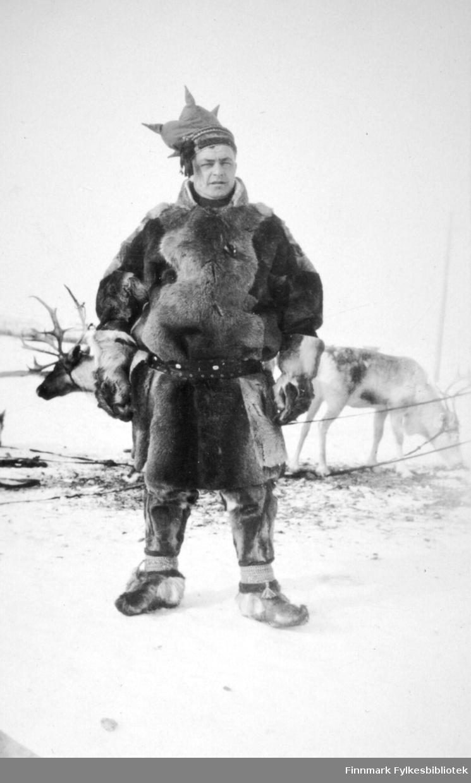 En same står foran to reinsdyr. Han har en stor skinnpesk, skinnbukse, skaller på beina, hansker og stjernelue på hodet. Reinsdyrene står bundet fast og det er strødd litt gress eller lav på snøen til dem. Skyfri himmel tyder på en fin vinterdag.
