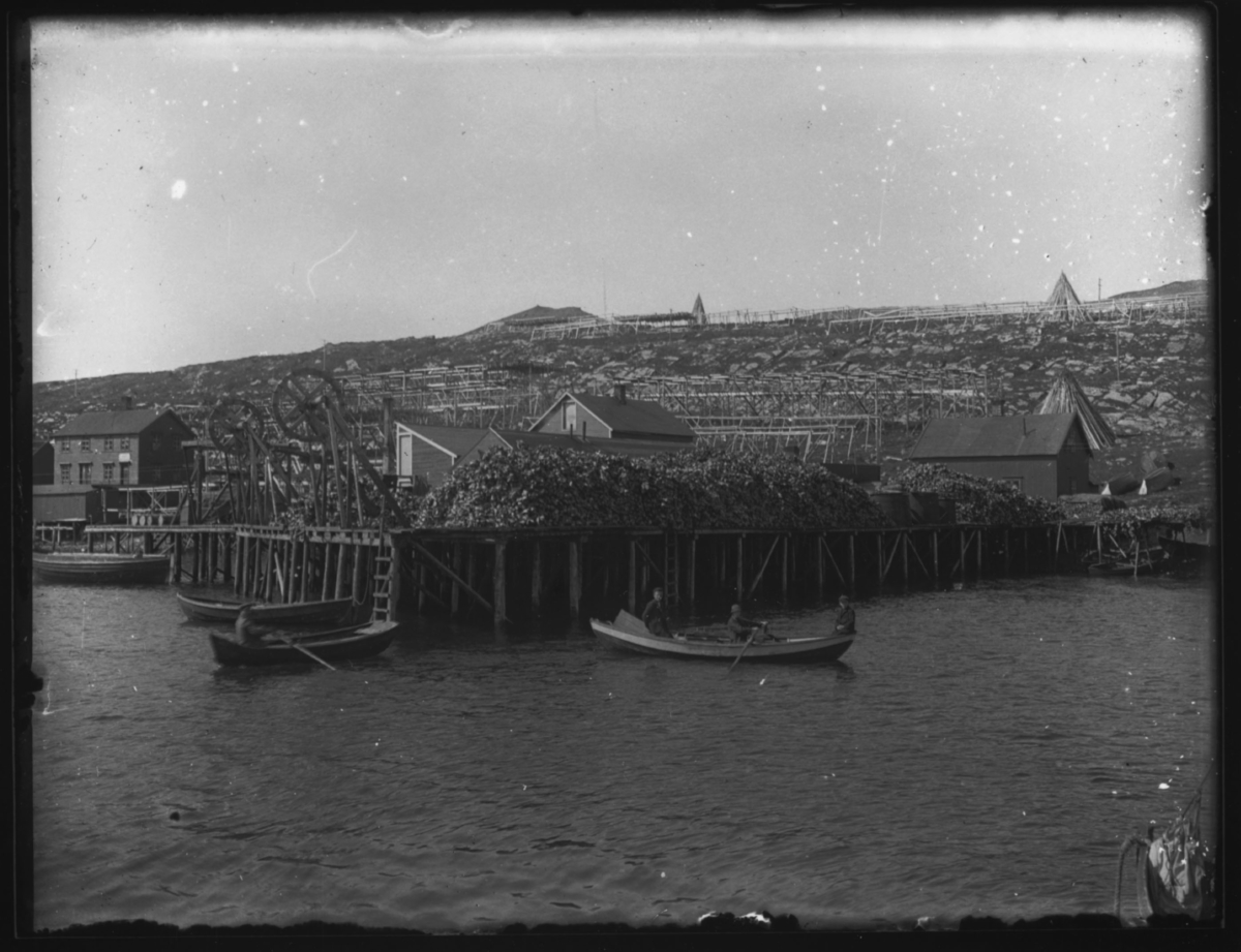 To robåter foran en kai i fiskeværet Båtsfjord. Kaian er stabla fullt av tørrfisk og fiskehoder. En mann ror den ene båten og en ung kvinne / jente den andre. To gutter sitter ombord. Det er sommer og dagen er solig. Fiskehjelene bak kaian og pakkhusene er stort sett tomme. To store heisekraner står på kaia.