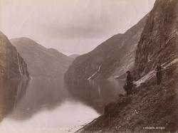 8553 Parti af Geirangerfjord, Søndmør