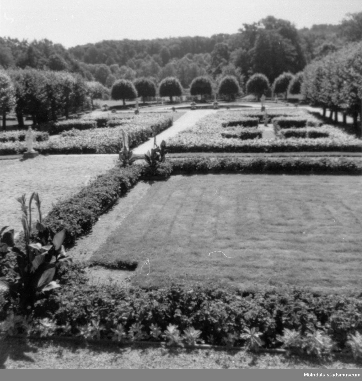 Gunnebo slottspark åt söder, 1970-tal.